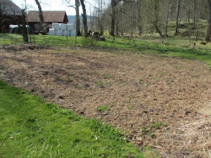 Trädgårdslanden ligger och väntar på att bli brukade.