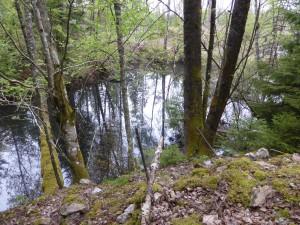 Efter malmbrytningen bildades små vackra dammar.