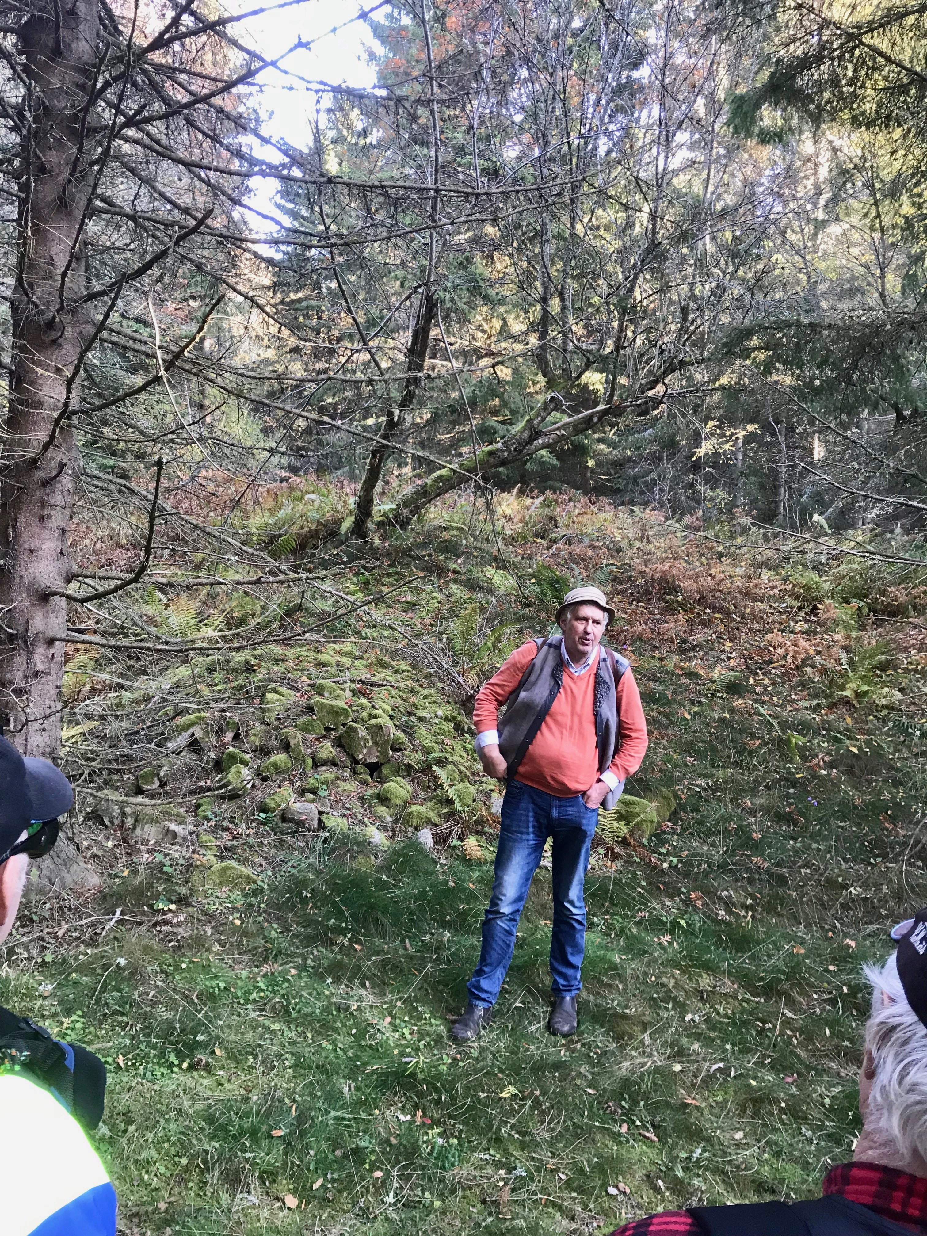 Gamla fruktträd och stenrösen vittnar om gamla torpställen