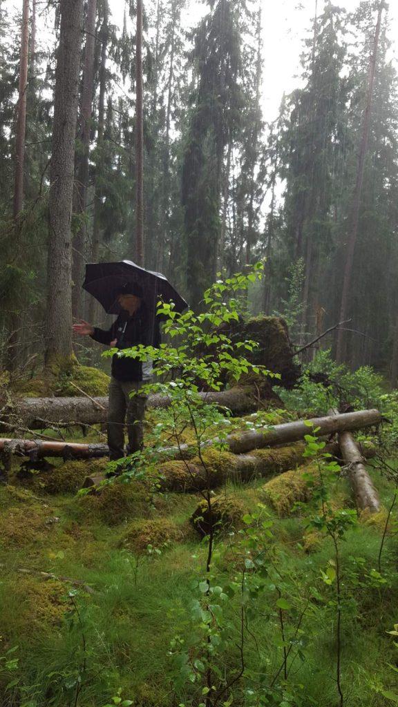 Inte lätt för guiden under en paraply. Gäller att hålla humöret uppe.