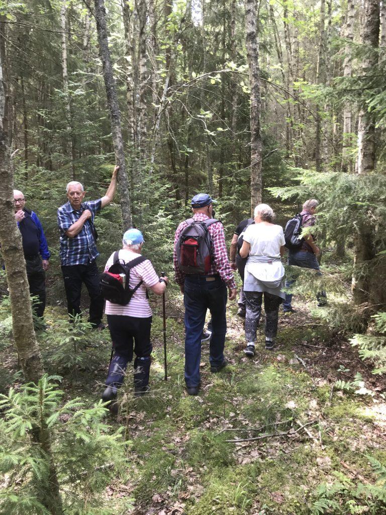 Vid sista bron fanns ett stort fält med nässlor så vi tog vägen rakt igenom skogen ett 100-tal meter.