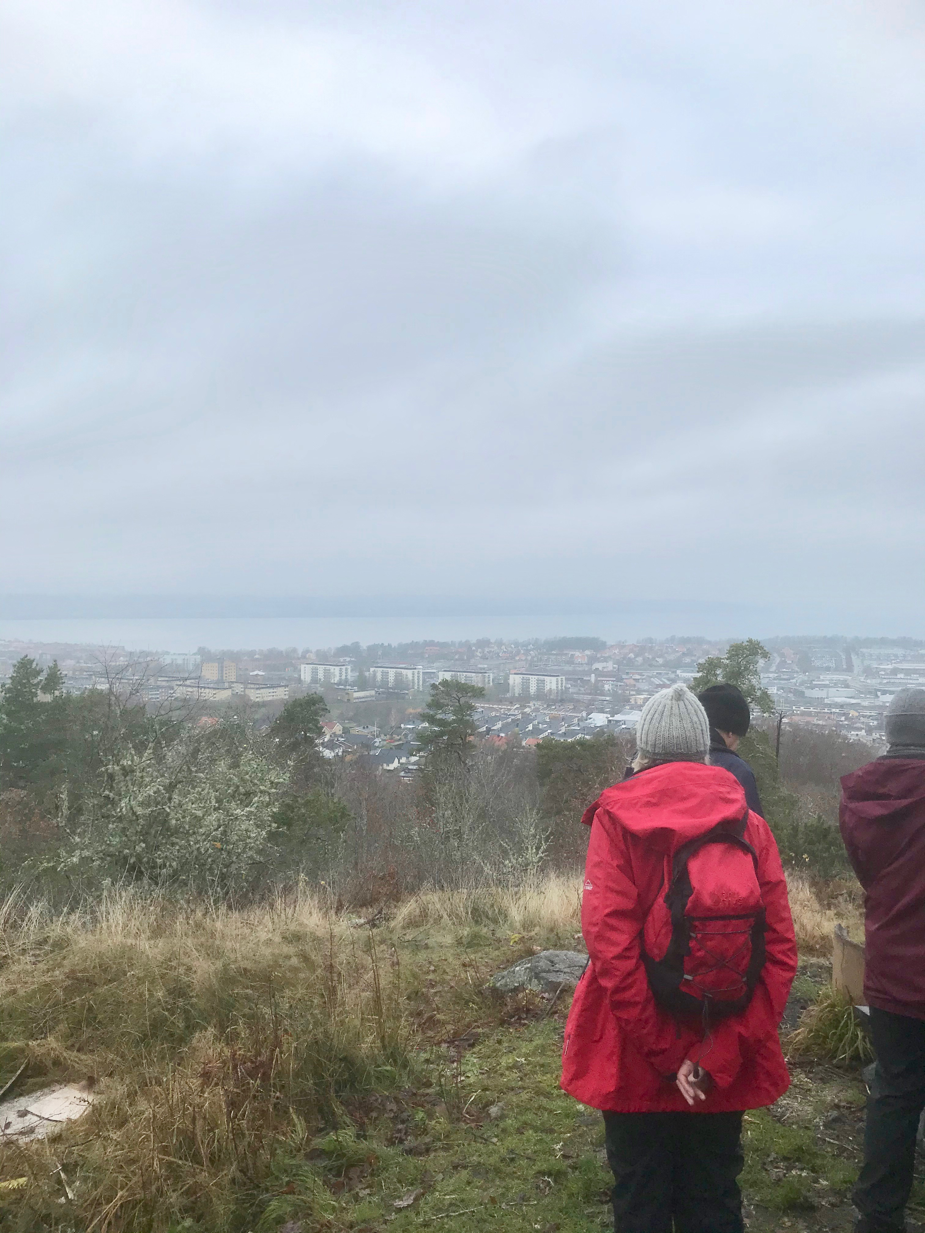 På en höjd är utsikten vid klart väder magnifik över Jönköping. I dag lade dimman en slöja över staden.