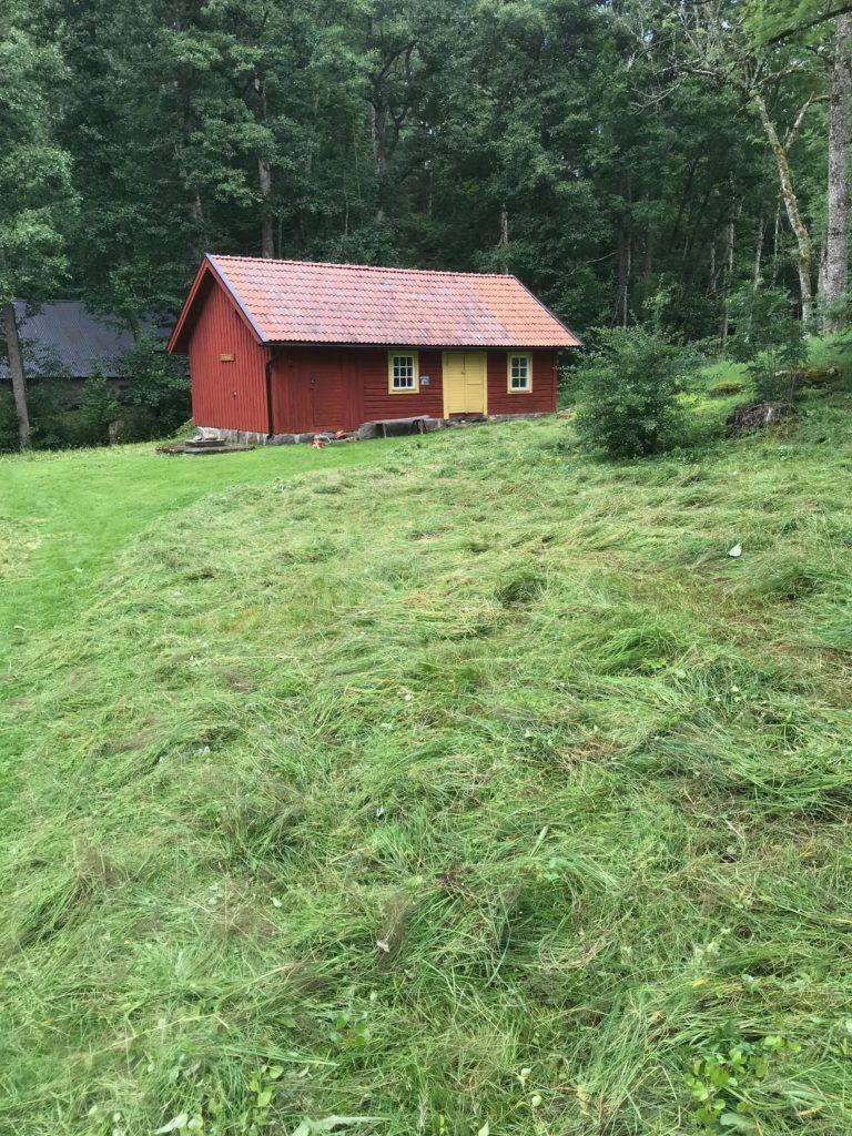 Oj, vilket fint resultat. Om några dagar ska allt räfsas ihop och tas bort så det inte göder marken. Den ska magras ut för att gynna ängsblommorna.