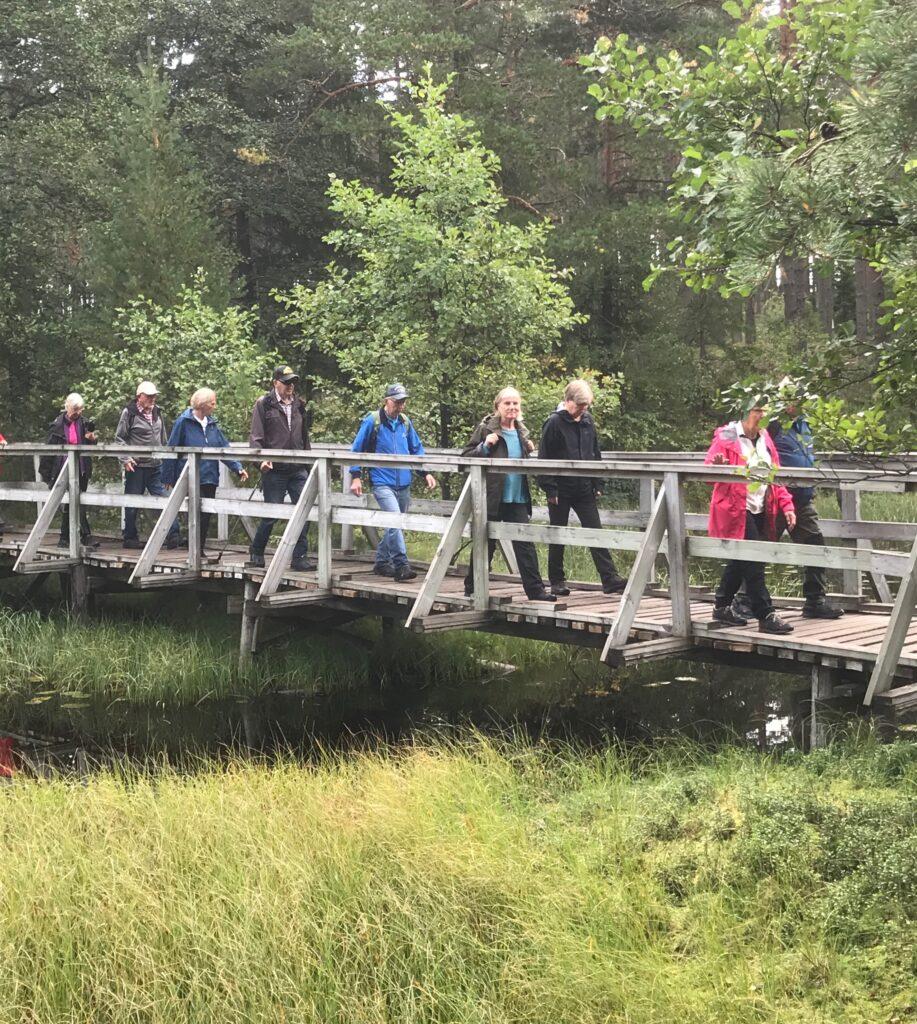 Bron vid dammens sydspets
