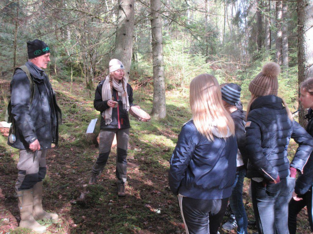 Det finns mycket att lära om skogen.