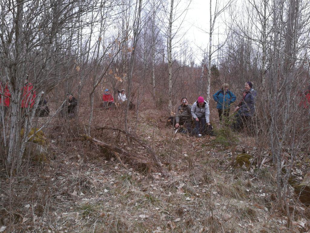 På öppna ställen var det snålblåst. Här hittade vi ett läställe i björkskogen, där vi kunde fika.
