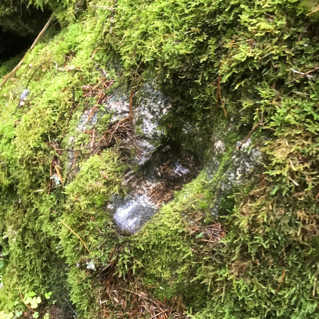Stenen var blanknött.