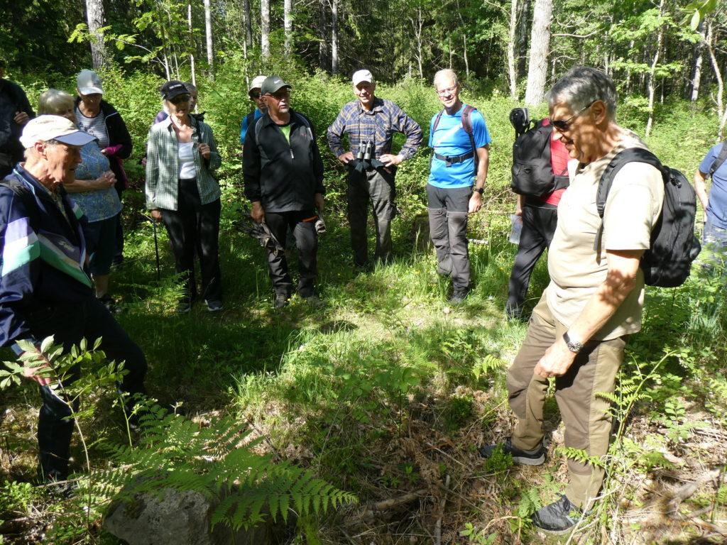 Här övertygade Jan-Åke oss om att en märklig sten med en grop i använts av stenhuggare.