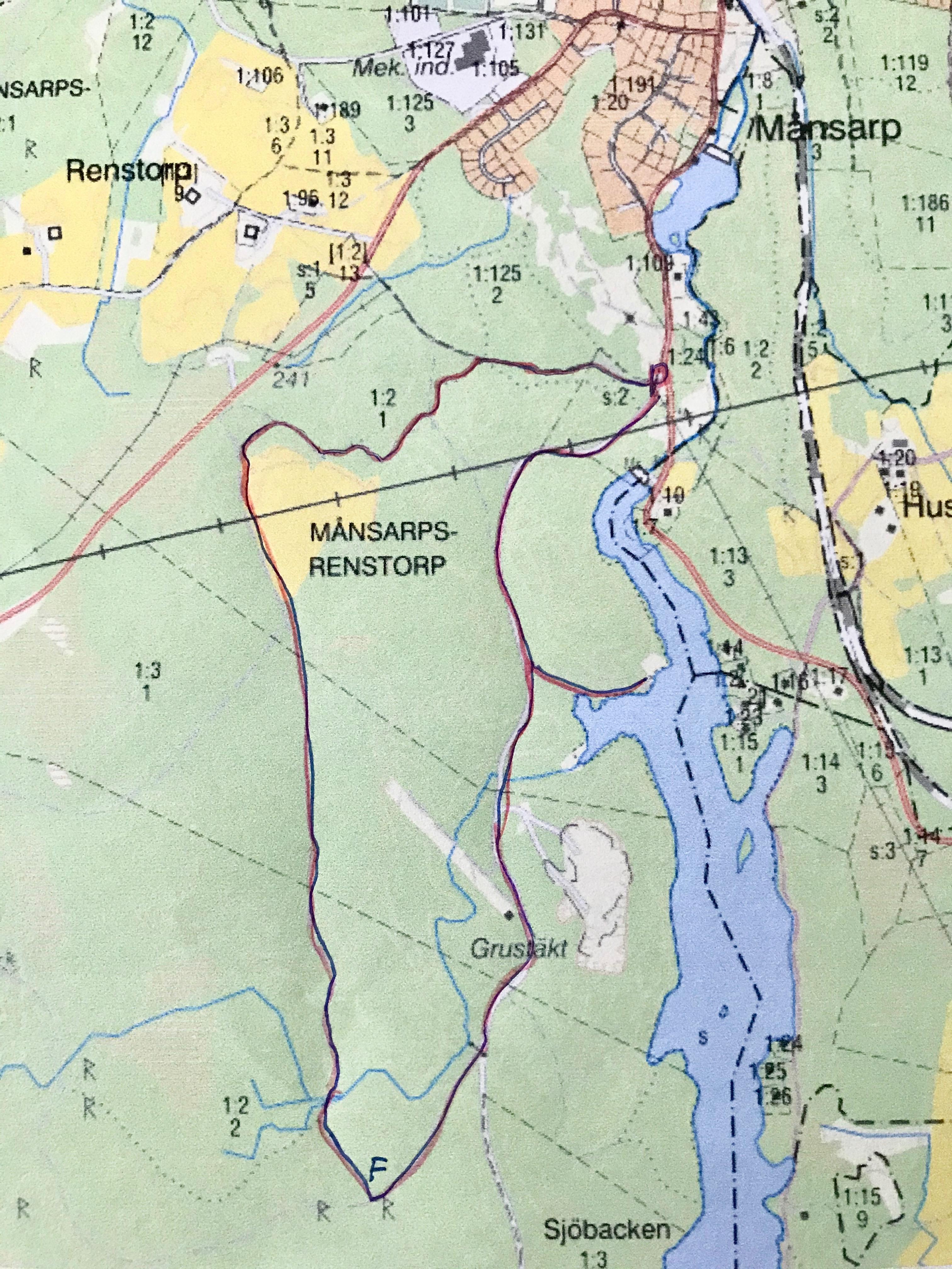 Vandringen startade strax N om Vederydssjön och gick sedan genom tallskog på släta momarker.
