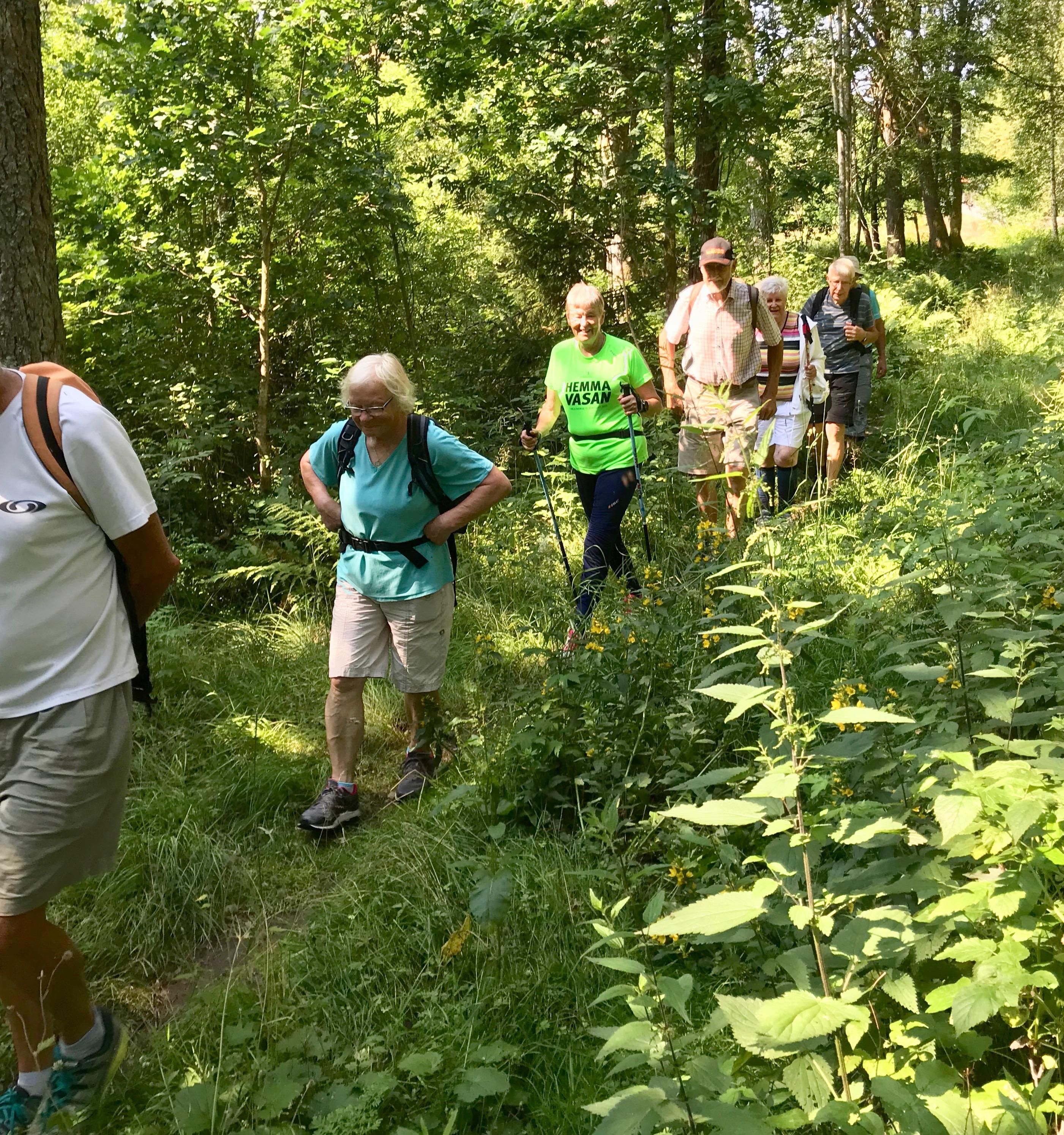 Vidare på Bauerleden förbi Nannyberg i yppig vegetation.