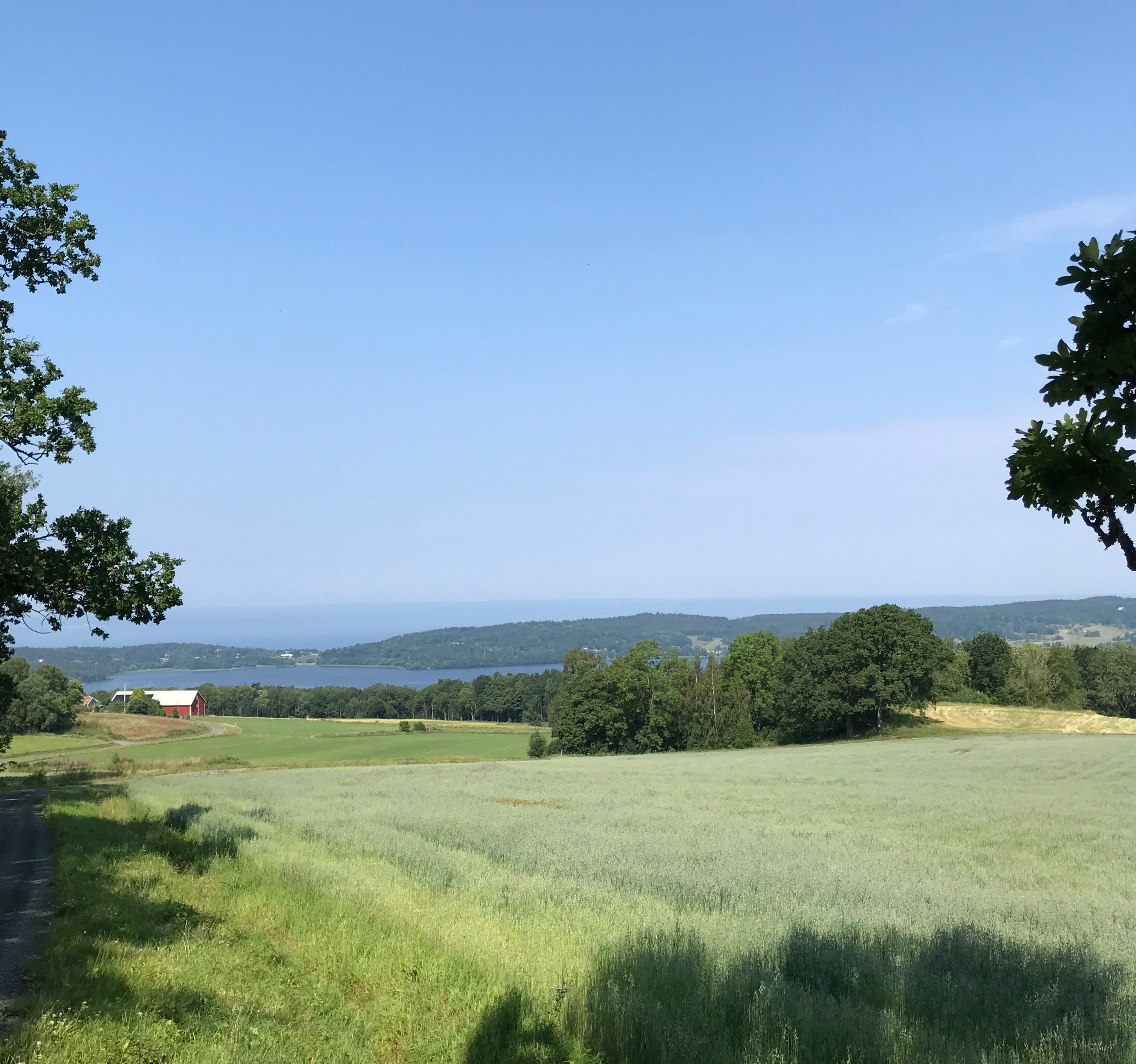 Vy från Utsikten vid Måla kulle mot Landsjön och Vättern i bakgrunden.