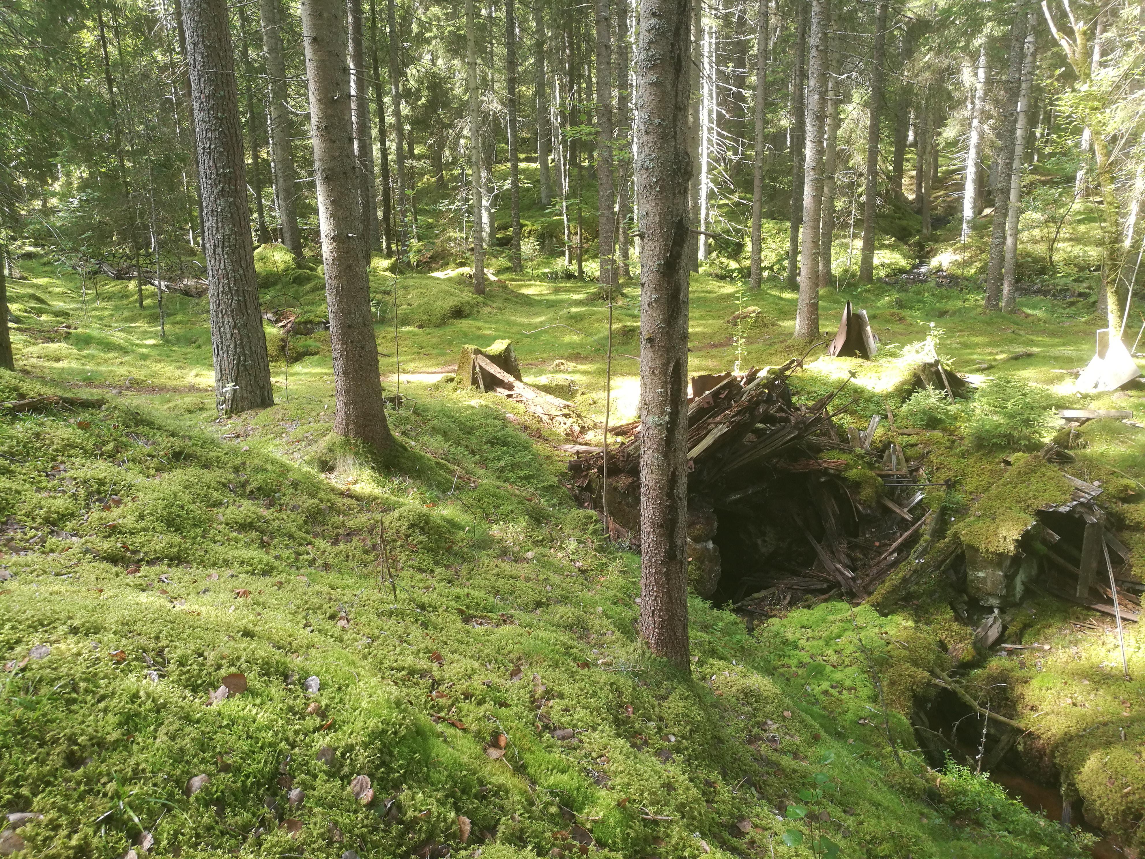 Resterna av Kåperyds kraftstation. Till vänster bakom trädstammarna kan man skymta resterna av vattentuben.